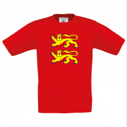 "T-shirt Enfant ""NORMANDIE"""
